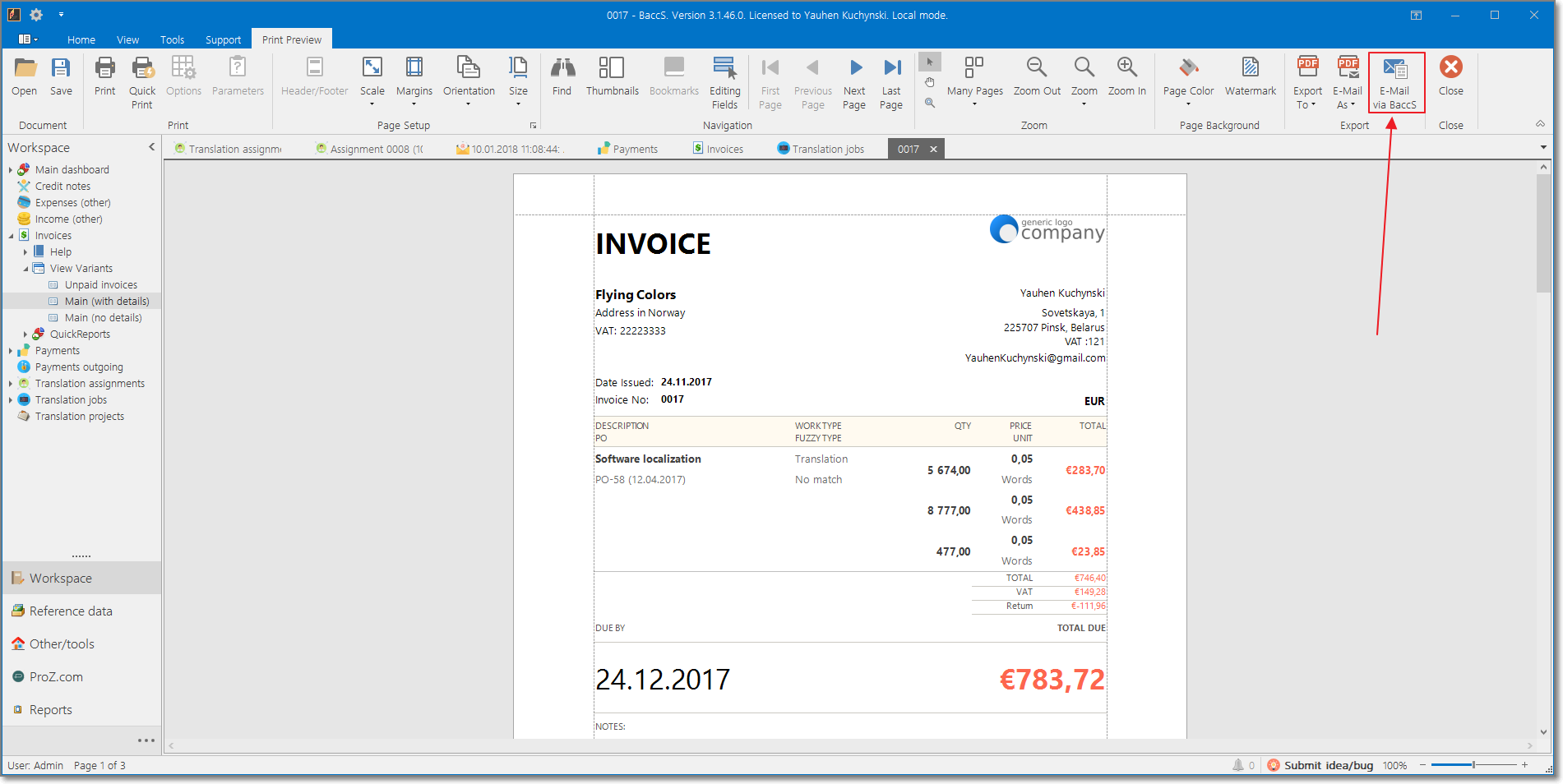 Invoice preview window